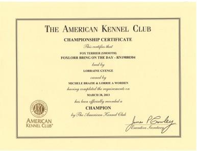 Champion certificate