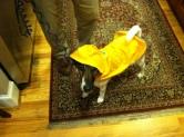 raincoat-model
