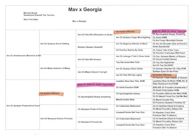 Mav x Georgia highlighted